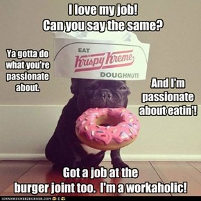 *Pork Chop's Career Advice*