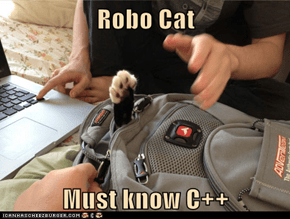 Robo Cat  Must know C++