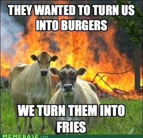 And They Call Us Heifers