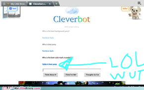 cleverbot whut
