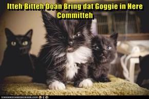Itteh Bitteh Doan Bring dat Goggie in Here Committeh