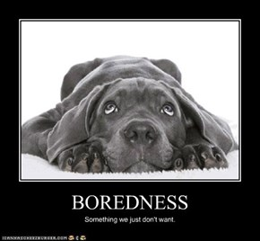 BOREDNESS