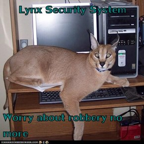 Lynx Security System  Worry about robbery no more