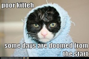 poor kitteh  some days are doomed from the start