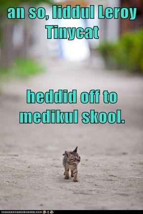 an so, liddul Leroy Tinycat heddid off to medikul skool.