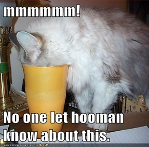 mmmmmm!  No one let hooman know about this.