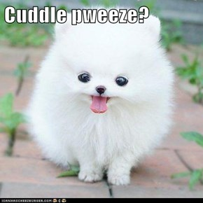 Cuddle pweeze?