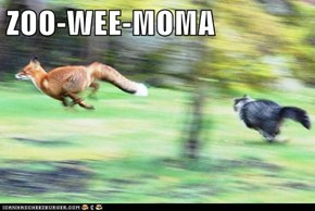 ZOO-WEE-MOMA