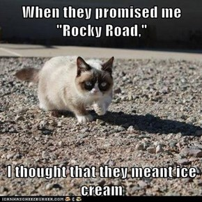 """When they promised me """"Rocky Road,""""  I thought that they meant ice cream"""