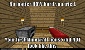No matter HOW hard you tried,  Your first Minecraft house did NOT look like this.