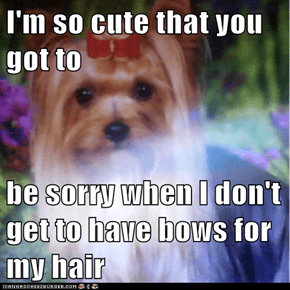 I'm so cute that you got to  be sorry when I don't get to have bows for my hair