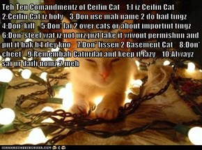 Teh Ten Comandmentz of Ceilin Cat    1:I iz Ceilin Cat    2:Ceilin Cat iz holy    3:Don use mah name 2 do bad tingz    4:Don' kill    5:Don' lai 2 over cats or about importint tingz    6:Don' steel wat iz not urz,juzt take it wivout permishun and put it b