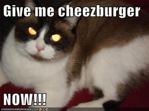 Give me cheezburger  NOW!!!