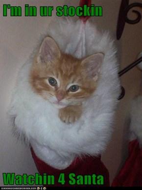 I'm in ur stockin  Watchin 4 Santa