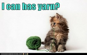 I can has yarn?