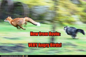 New from Rovio:  VERY Angry Birds!