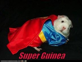 Super Guinea