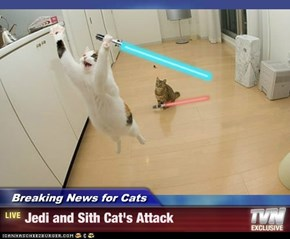 Breaking News for Cats - Jedi and Sith Cat's Attack