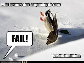 Fail Duck