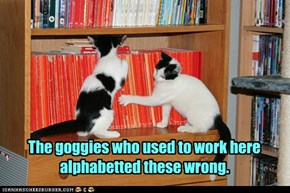 Hey, cats may be a little short on grammar, but we knows our alphabets!
