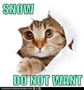 SNOW  DO NOT WANT