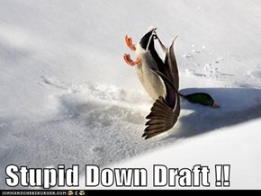 Stupid Down Draft !!