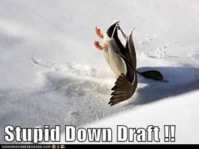 Stupid Down Draft !!