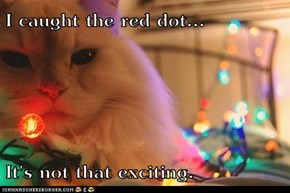 I caught the red dot...  It's not that exciting.