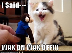 I Said---  WAX ON WAX OFF!!!