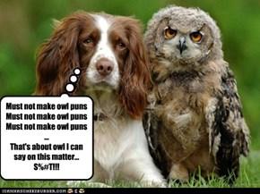 It's okay, we owl make mistakes