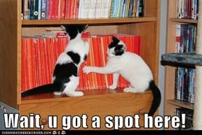 Wait, u got a spot here!