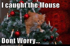 I caught the Mouse  Dont Worry...