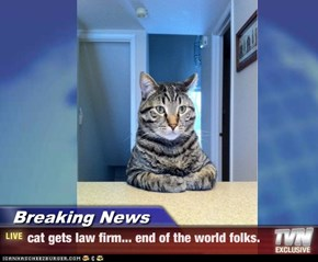 Breaking News - cat gets law firm... end of the world folks.