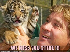 WE MISS YOU STEVE !!!