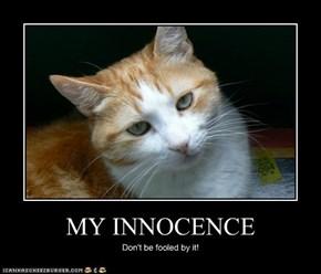 MY INNOCENCE