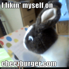 I likin' myself on  cheezburger.com