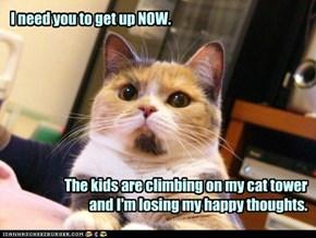 I'm only feline!