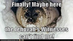 Finally! Maybe here  the Jehovah's Witnesses can't find me!