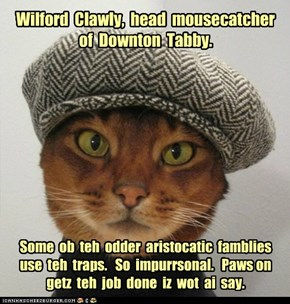 Wilford  Clawly,  head  mousecatcher  of  Downton  Tabby.