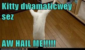 Kitty dwamaticwey sez  AW HAIL ME!!!!!