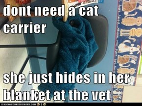dont need a cat carrier  she just hides in her blanket at the vet