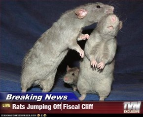 Breaking News - Rats Jumping Off Fiscal Cliff