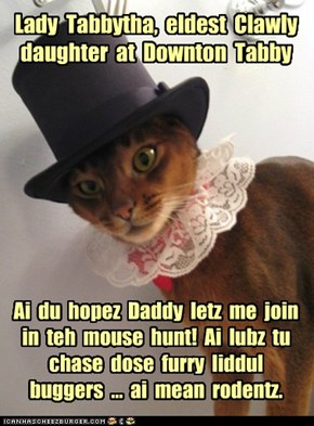 Lady  Tabbytha,  eldest  Clawly daughter  at  Downton  Tabby