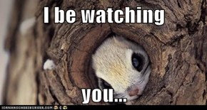 I be watching  you...