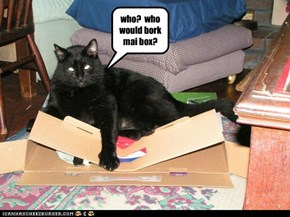 who?  who would bork mai box?