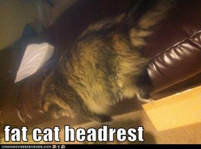 fat cat headrest