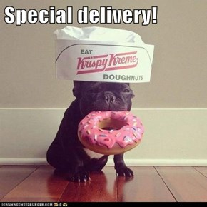 Special delivery!