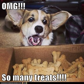 OMG!!!  So many treats!!!!