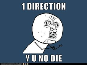 1 DIRECTION  Y U NO DIE