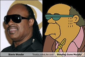 Stevie Wonder Totally Looks Like Bleeding Gums Murphy